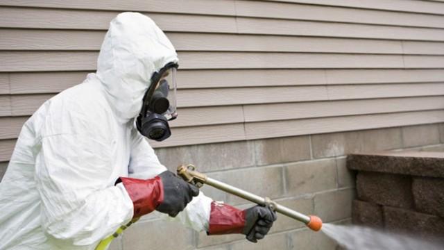 Выведение насекомых и грызунов из помещения гаража