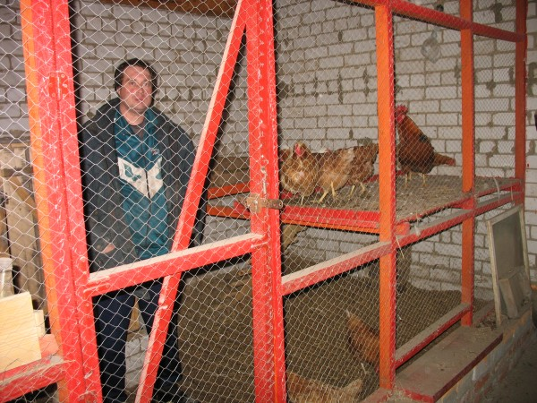 Выращиваем кур в гараже