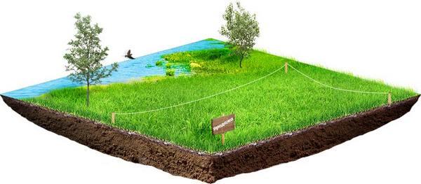 Приобретение вместе с земельным участком